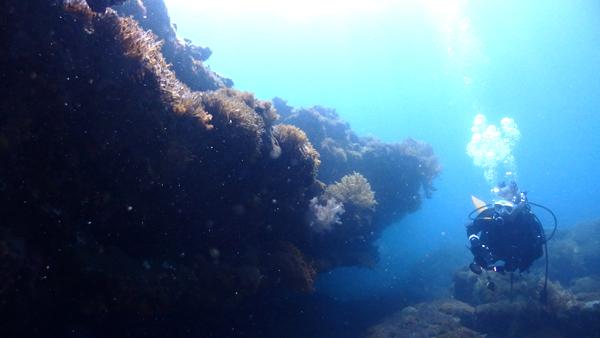 横島断層の岩のオーバーハングは人が通れるほど。