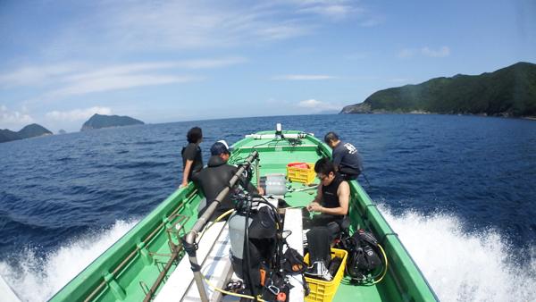 サンゴ保全活動