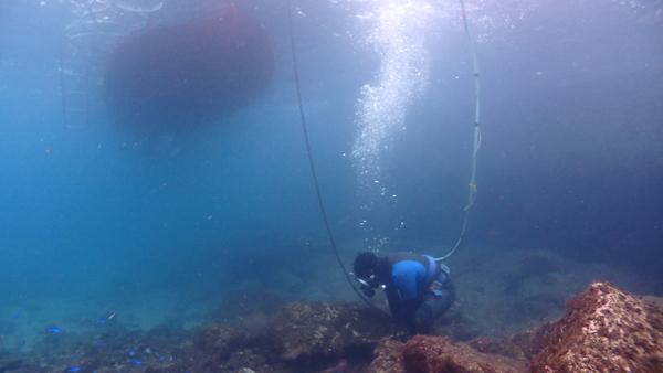 フーカー潜水のホースが船の上から海中まで続きます