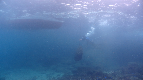 フーカー潜水作業の様子