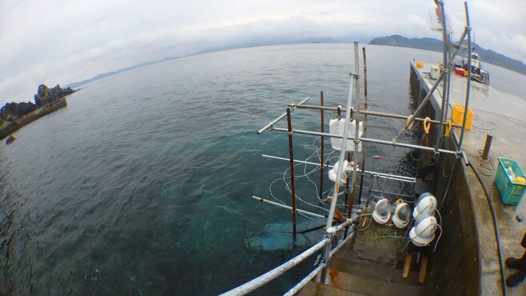 地上から見たシーウォーカーで歩く海。桟橋横を平行に沖まで歩いてゆきます。