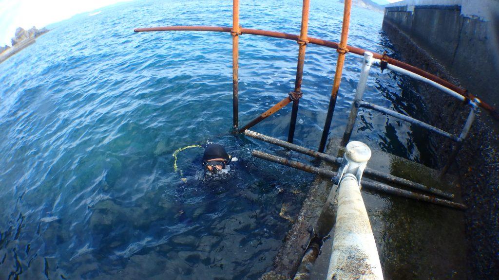 潜水作業中のダイバーが陸上の様子を見るために顔を出している
