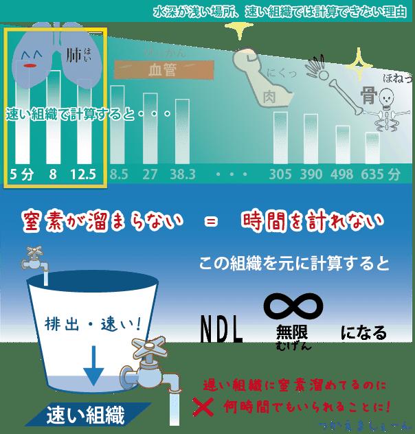 水深が浅い場所で、窒素吸収が速い組織を元に計算してしまうと、NDLが無限になってしまう。これは速い組織を穴が開いたバケツに例えたときに、水(窒素)が漏れるのが速すぎて水が満タンにならないのと同じ。
