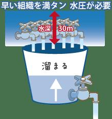 窒素の吸収・排出が速い組織を窒素で満たすためには、高い圧力が必要です。窒素の排出が早いため、バケツに例えると、大きな穴が開いたバケツの様なものに、水を注ぎ込むようなものです。