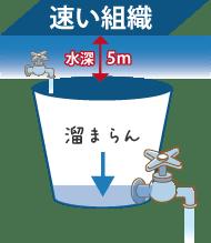 窒素吸収が速い組織は排出も速い。水深5mのように浅い場所では、窒素が抜けるのが速すぎて満タンになりません。これはバケツに穴が空いていて、上からちょろちょろと水をたらしても満タンにならないのと同じです。