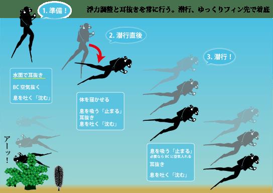 ダイビングのフリー潜行で大事なことは、浮力調整と耳抜きを常に行うこと。水面での潜行準備は、まず耳抜き。BCの空気を抜いて、息を吐き切ると沈みます。潜行直後に体を寝かせて、水の抵抗を受けることで、落下のスピードをコントロール。最後の着底は膝をつかない、フィンの先からゆっくりと着底する。