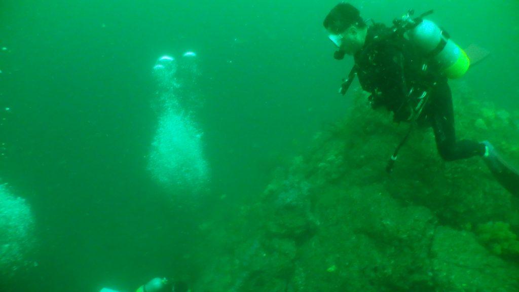 濁った水で写真を撮影すると、このように全体が緑色の写真が出来上がります。