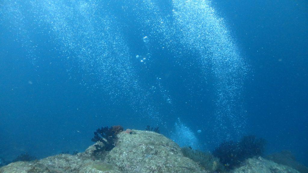水中の流れが強い時は、ダイバーが吐いた泡がまっすぐには水面に向かわない。流れがある方向になびいているのが良くわかる。