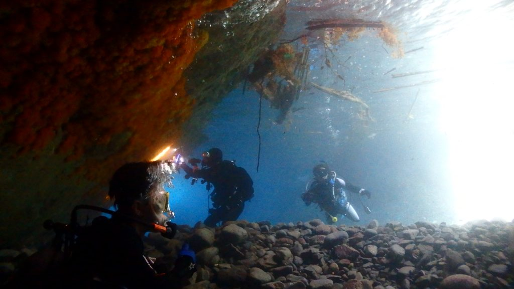 小横島の洞窟は初心者の方が入っても安心な水深。写真撮影をするのにとても良い場所です。