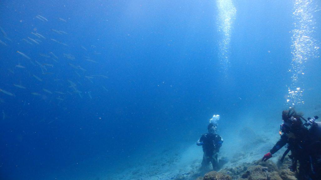 急な斜面に膝立ちして、中層を泳ぐカマスを見上げるお二人。深さは水深9m体験ダイビングではあまり行かない深さです。