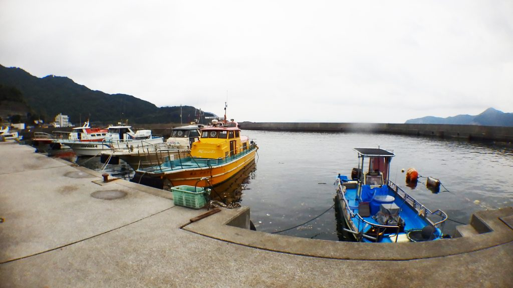 私、高橋の住む中泊の港には沢山の渡船が停泊しています