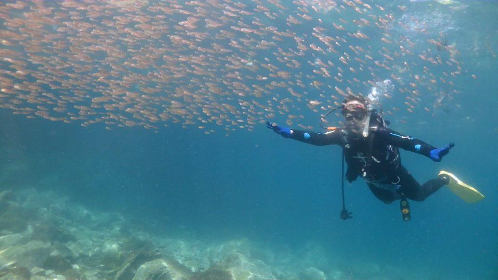 限定水域で一通りの技術を身に着けているので、すでに中性浮力を取って泳ぐことは簡単そうな女性の講習生。水中をふわふわと浮きながら、魚の大群の目の前を横切って泳いでいます。