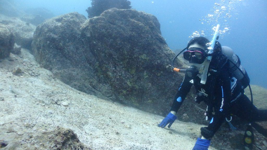 水中で砂地に寝そべりながら、砂の中に潜る魚をじっと見つめる女性ダイバー