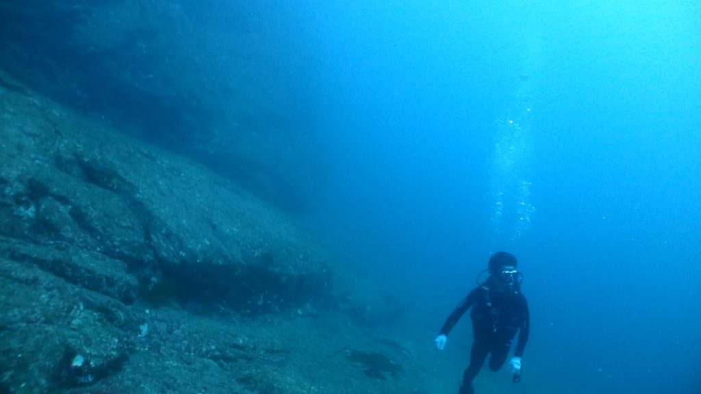 25m付近で一休みできる一枚岩の上では、男性ダイバーが周りを見ながらゆったりと泳いでいます。