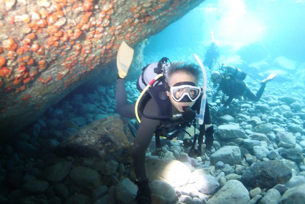 洞窟の壁面にはイボヤギが付着していますが、実はこれもサンゴの仲間です