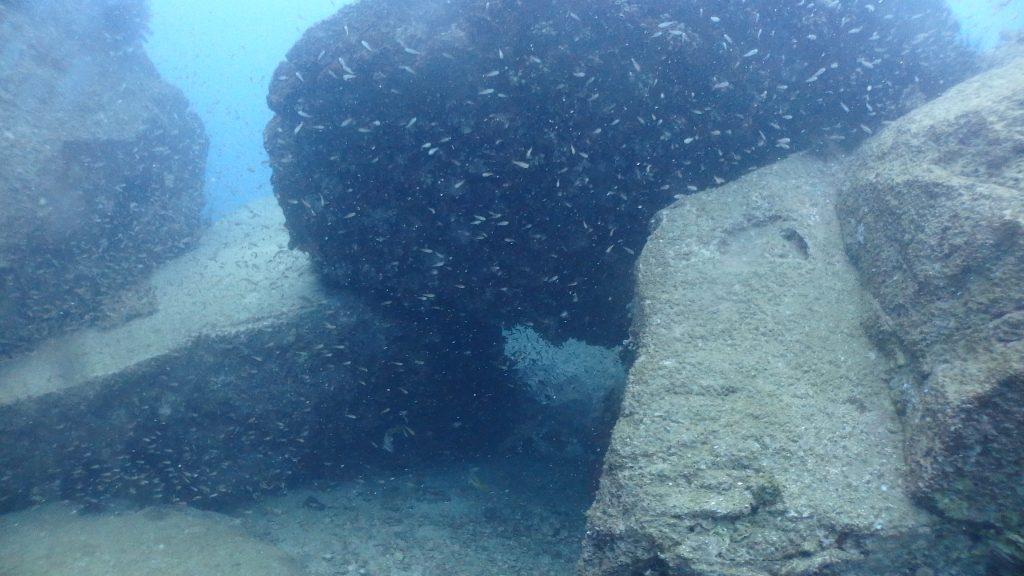 3mはありそうな大きな岩が沢山重なって、間には沢山の魚がたまっているダイビングポイント。講習の時は極力この場所を使って沢山の魚を紹介するようにしています。