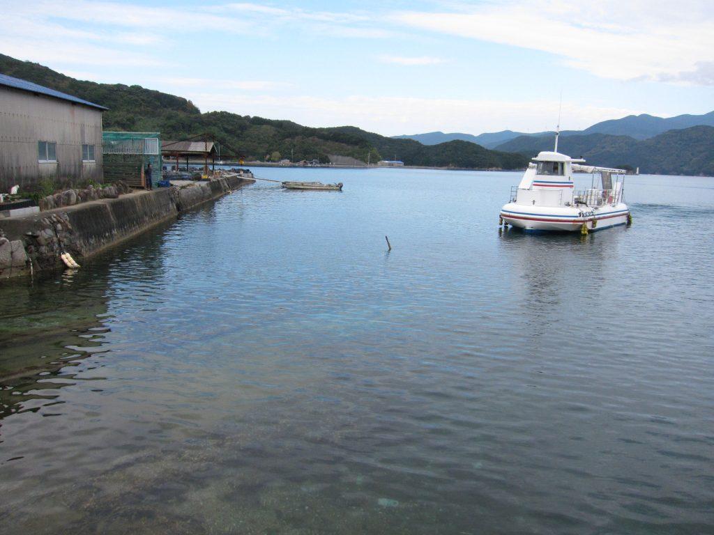 二週間後、船をドックに入れる直前です。うっすらと海中に敷いてあるレールが見えていますが、その先には船を乗せるための船台があり、その船台に船を上手に乗せる必要があります