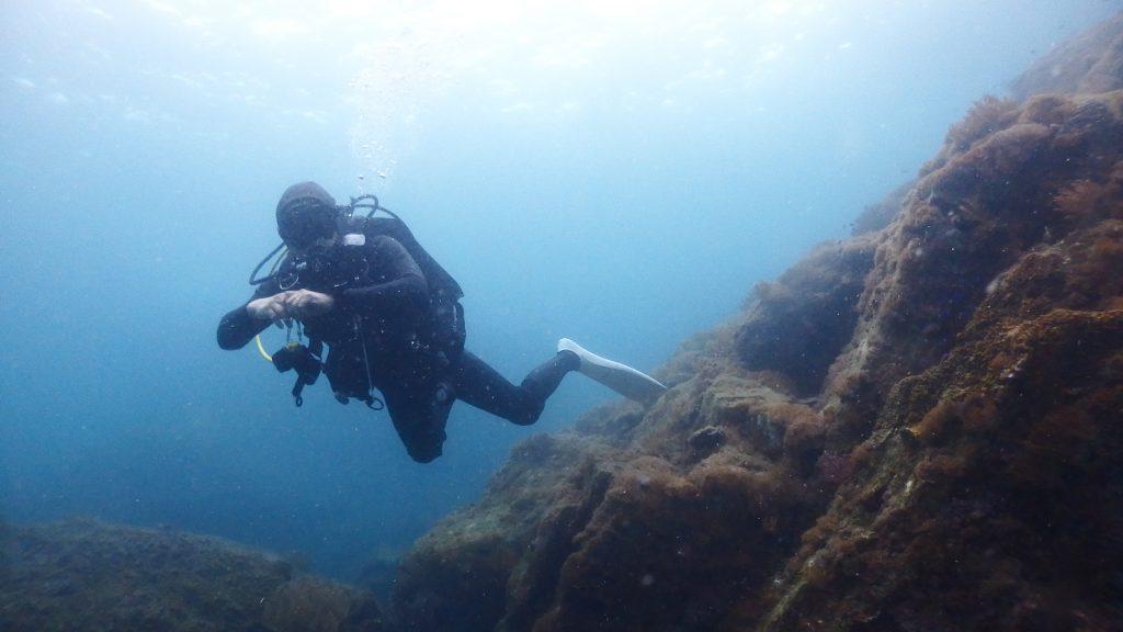 ベテランダイバーの仲間入り?一昨年ライセンスを取得してからすでに50本以上の経験を持つAさんは、水中をとても優雅に泳いでいます。