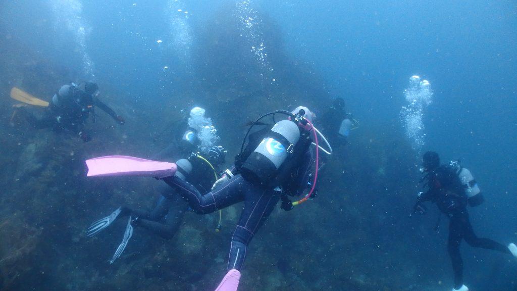 小横島の浅い場所にはサンゴ群生が広がる。その場所を泳ぎ始める6名のダイバー達。