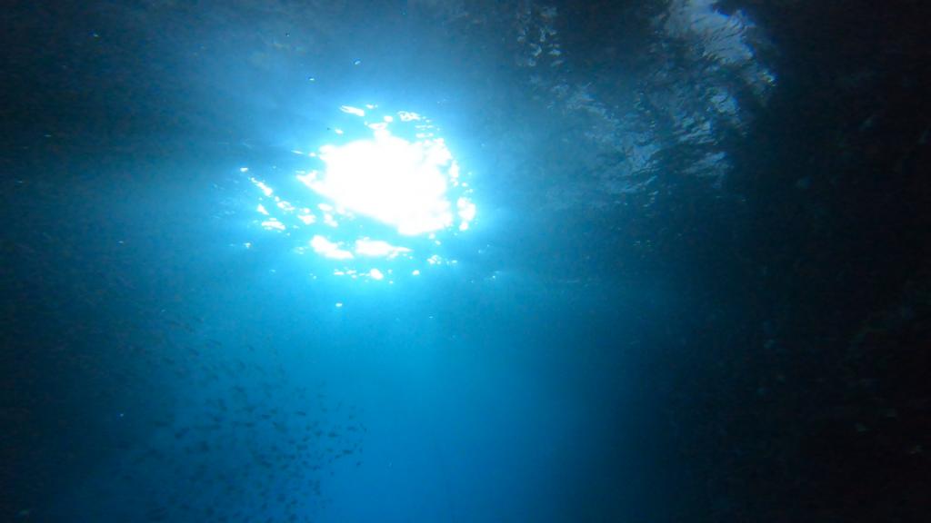 光が差し込む場所の下から、水底から上に向かって撮影すると、光のラインがとても綺麗に写ります。
